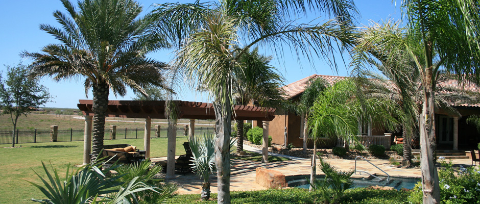 A popular trend in South Texas and in Corpus Christi landscaping is known  as Xeriscaping. Because of its reliance on plant life with low water usage,  ... - C-Scapes Coastal Landscape Specialists Landscape And Xeriscape Design
